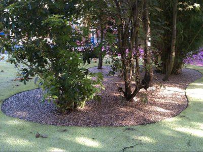 Resin Bound Tree Pits